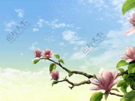花朵背景PPT