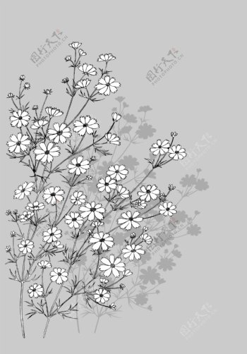 日本的植物花卉矢量素材7蜻蜓和花卉画