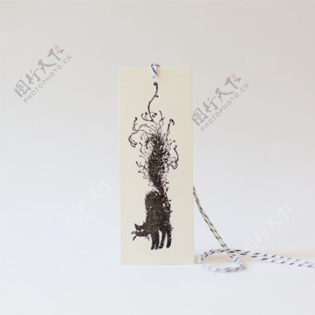吊牌动物猫免费素材