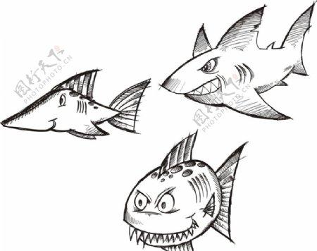 手绘鲨鱼鲸鱼图片
