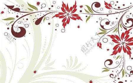 线条花卉图片