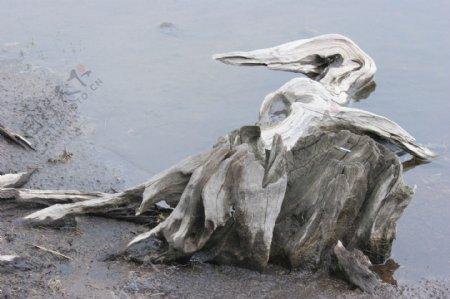 丽水大山峰枯木图片