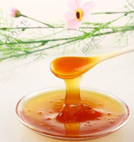 蜂蜜果酱食品