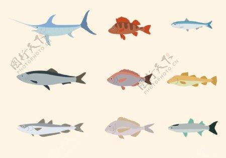 矢量鱼类插画