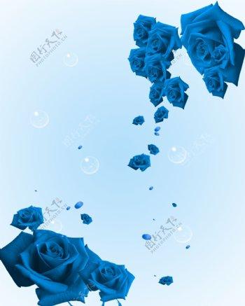 蓝玫瑰移门图案