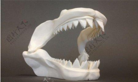 恐龙齿骨3D打印模型