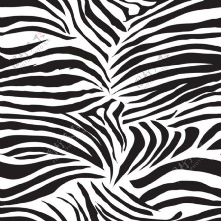 动物毛皮纹理无缝花纹矢量图素材