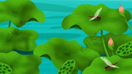 夏至池塘荷叶清新背景