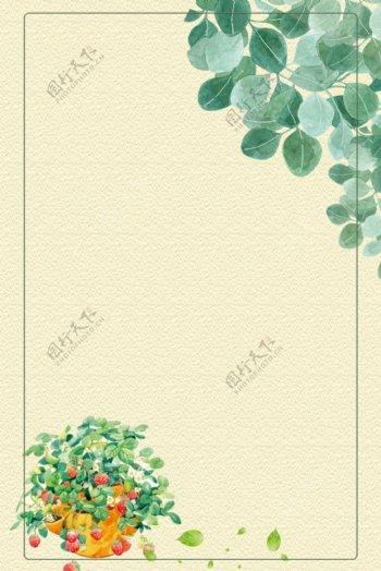 绿叶草莓篮清新纹理边框电商淘宝背景5