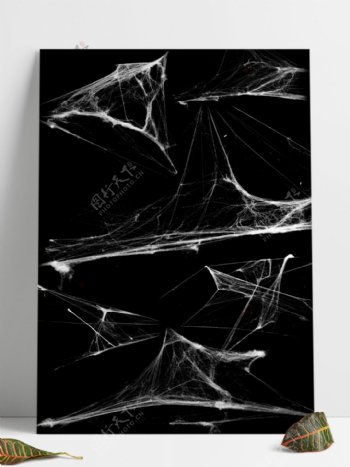 蜘蛛网笔刷预设abr文件