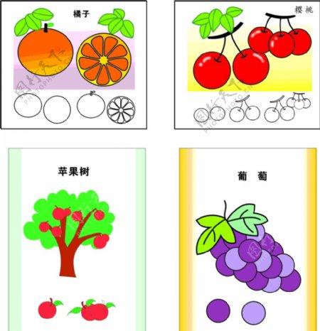樱桃橙子苹果树葡萄