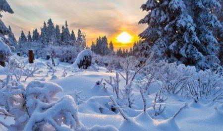 白雪皑皑纯白景色