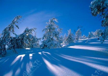 唯美冬日雪景纯白绝美