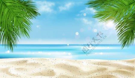 夏天蓝天白云沙滩植物