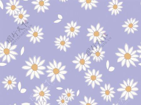 数码印花设计花型菊花