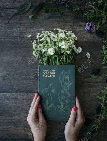 会开花的书本
