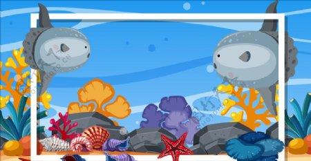 海洋动物插画