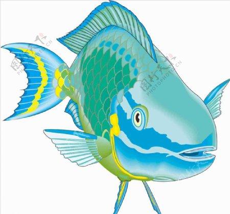 拦住鱼海洋鱼矢量手