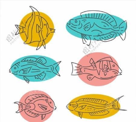 手绘鱼类设计图片