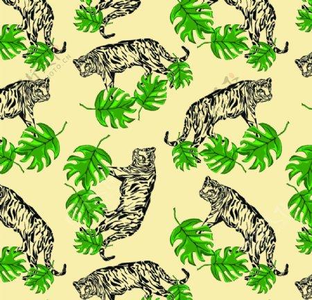 热带植物图片