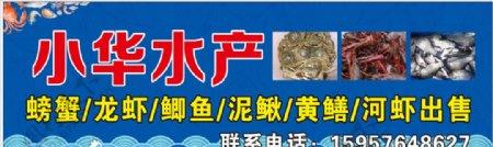 海鲜水产广告设计图片