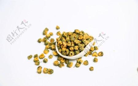 花茶花骨朵泡茶背景海报素材图片