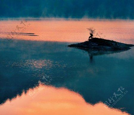 夕阳红日落图片