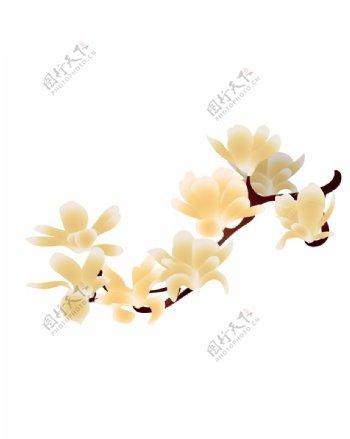 矢量玉兰花图片