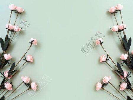 绿色地板上的粉色玫瑰图片