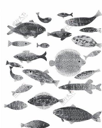 海鱼海洋海底世界各种鱼图片