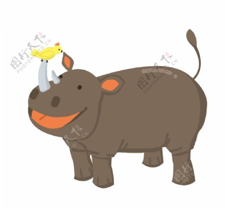 鼻子上有只小鸟的犀牛插画图片