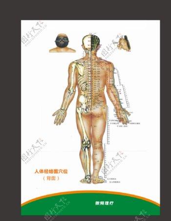 人体经络穴位图片