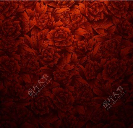 玫瑰花矢量素材图片