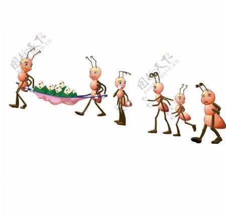 矢量蚂蚁插画图片