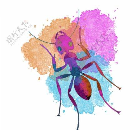 彩绘卡通蚂蚁插画图片
