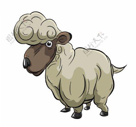 卡通手绘绵羊图片