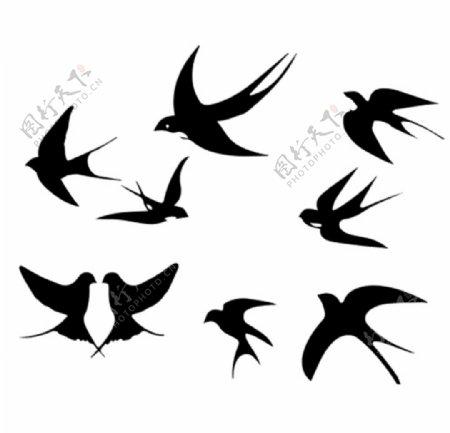 燕子矢量图片
