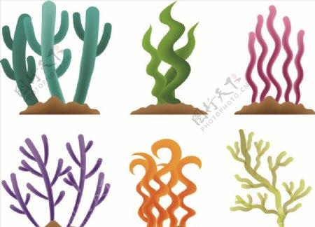 矢量柔美卡通珊瑚藻图片