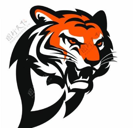老虎矢量素材图片