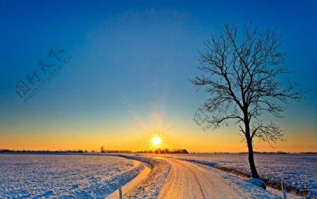 唯美冬日夕阳下的雪景图片