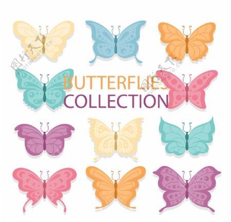 蝴蝶昆虫动物图片