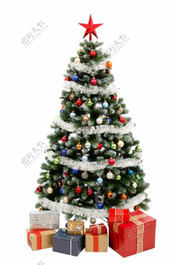 圣诞树png图片