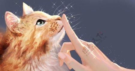 手绘漂亮猫咪图片