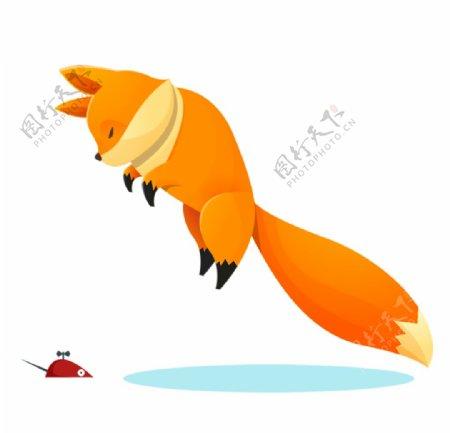 可爱跳起来的狐狸图片