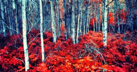 桦树风景油画图片